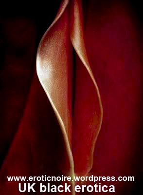 petal - en